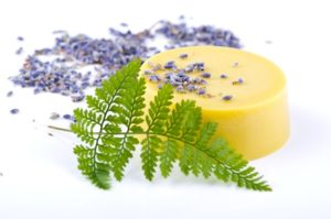 Ming Fern with herbal blue lavender, Italian mandarin, red ginger, earthy Indonesian patchouli, oak moss, gentle Aloe Vera, Kaffir lime and Argentina lemon leaf
