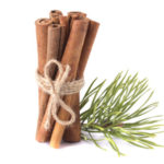 35546886 - spruce twigs and sticks cinnamon